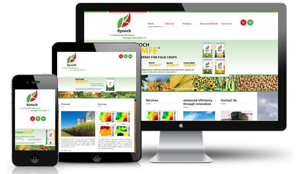 micro site web